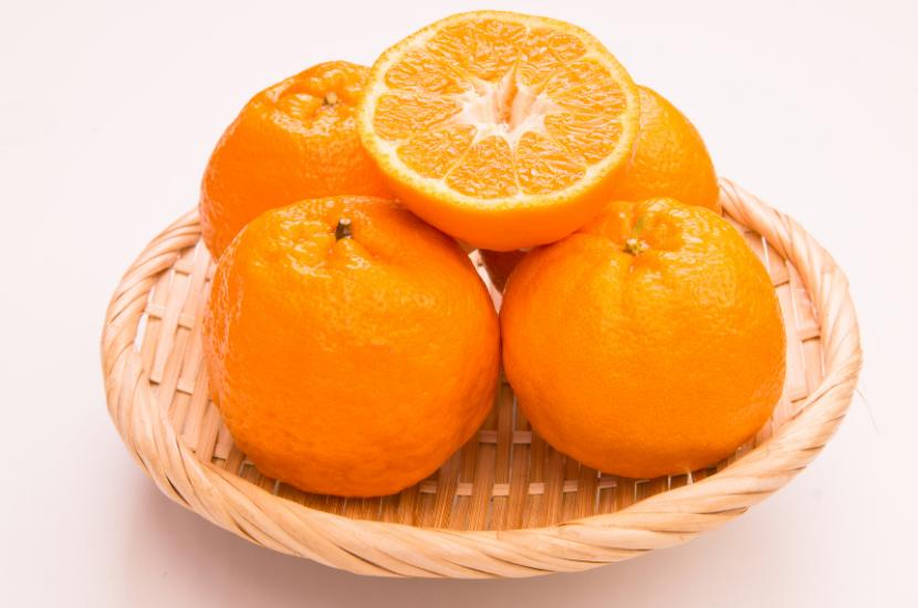 Ponkan - types of CNY oranges